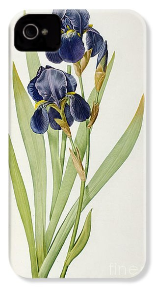 Iris Germanica IPhone 4 / 4s Case by Pierre Joseph Redoute