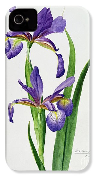 Iris Monspur IPhone 4 / 4s Case by Anonymous