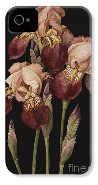 Irises IPhone 4 / 4s Case by Jenny Barron