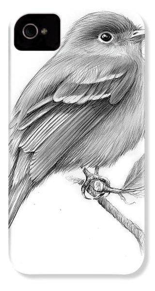 Least Flycatcher IPhone 4 / 4s Case by Greg Joens