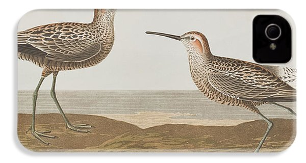 Long-legged Sandpiper IPhone 4 / 4s Case by John James Audubon