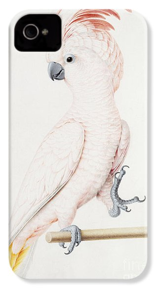 Major Mitchell's Cockatoo IPhone 4 / 4s Case by Nicolas Robert