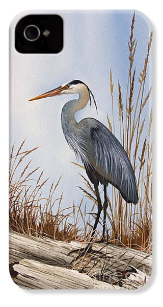 Nature's Gentle Beauty IPhone 4 / 4s Case by James Williamson