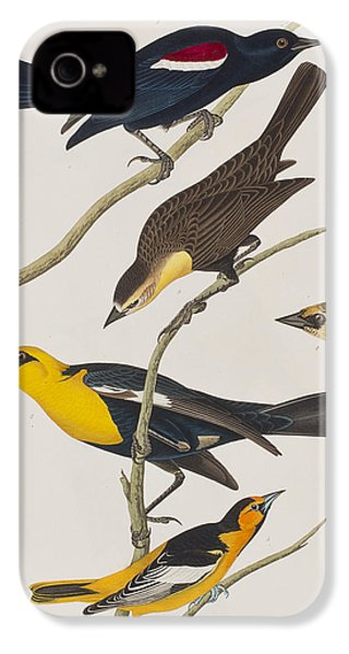 Nuttall's Starling Yellow-headed Troopial Bullock's Oriole IPhone 4 / 4s Case by John James Audubon