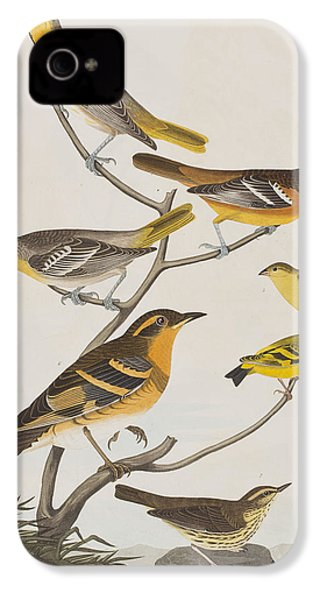 Orioles Thrushes And Goldfinches IPhone 4 / 4s Case by John James Audubon