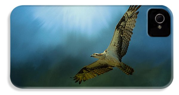 Osprey In The Evening Light IPhone 4 / 4s Case by Jai Johnson