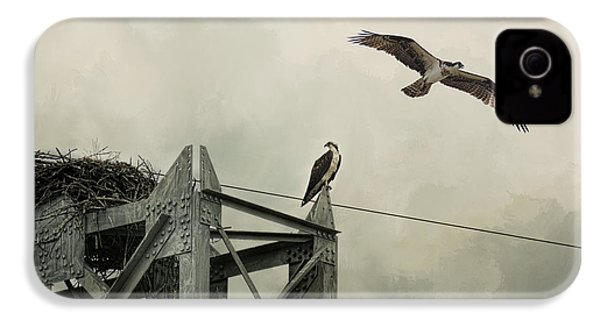 Ospreys At Pickwick IPhone 4 / 4s Case by Jai Johnson