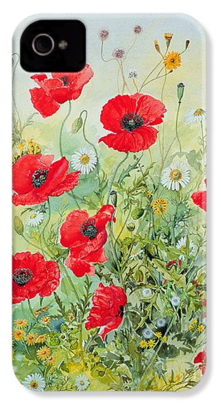Poppies And Mayweed IPhone 4 / 4s Case by John Gubbins