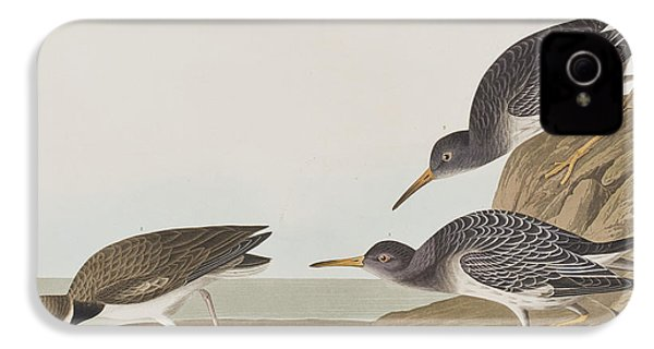 Purple Sandpiper IPhone 4 / 4s Case by John James Audubon