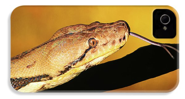 Python IPhone 4 / 4s Case by Donna Kennedy