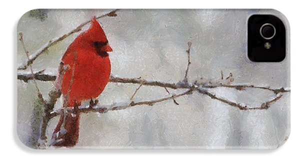 Red Bird Of Winter IPhone 4 / 4s Case by Jeff Kolker
