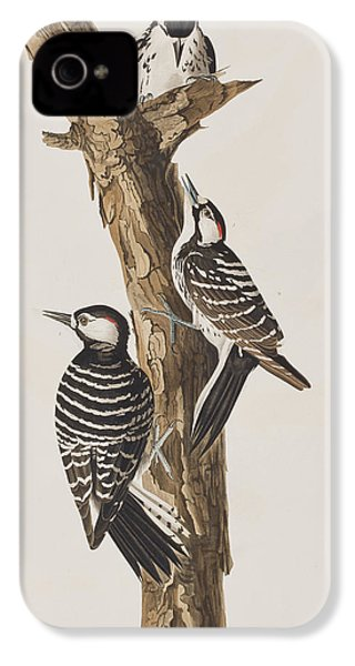 Red-cockaded Woodpecker IPhone 4 / 4s Case by John James Audubon