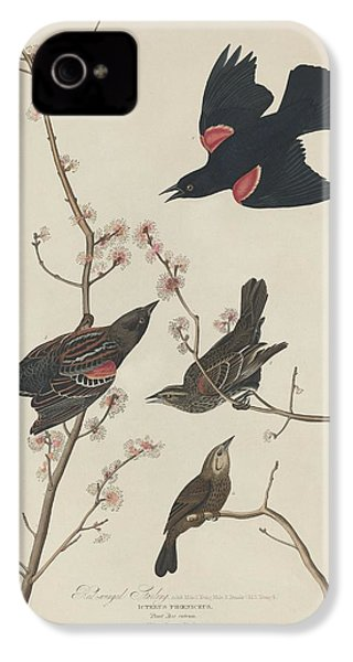 Red-winged Starling IPhone 4 / 4s Case by John James Audubon