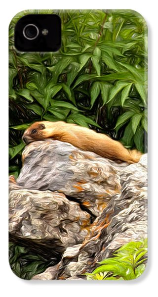 Rock Chuck IPhone 4 / 4s Case by Lana Trussell