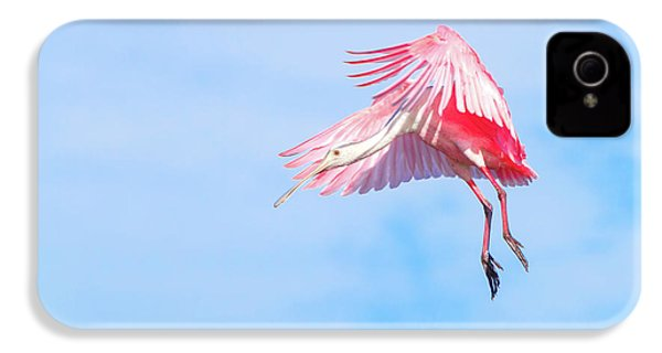 Roseate Spoonbill Final Approach IPhone 4 / 4s Case by Mark Andrew Thomas