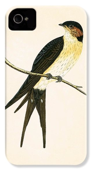 Rufous Swallow IPhone 4 / 4s Case by English School