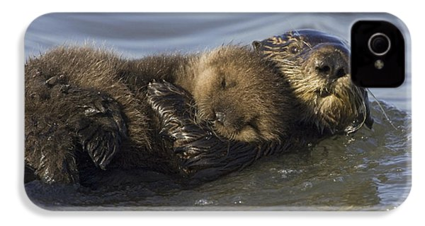 Sea Otter Mother With Pup Monterey Bay IPhone 4 / 4s Case by Suzi Eszterhas