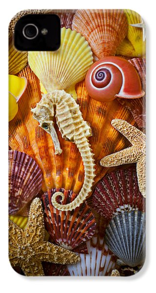 Seahorse And Assorted Sea Shells IPhone 4 / 4s Case by Garry Gay