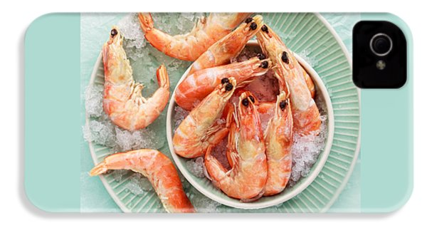 Shrimp On A Plate IPhone 4 / 4s Case by Anfisa Kameneva