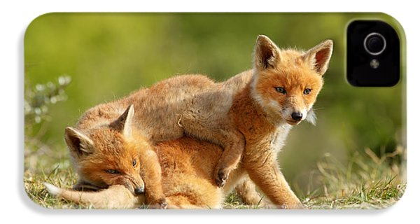 Sibbling Love - Playing Fox Cubs IPhone 4 / 4s Case by Roeselien Raimond