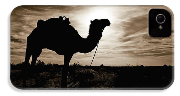 Silhouetted Camel, Sahara Desert, Douz IPhone 4 / 4s Case by David DuChemin