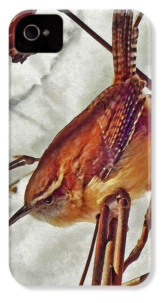 Slim Pickens, Carolina Wren IPhone 4 / 4s Case by Ken Everett