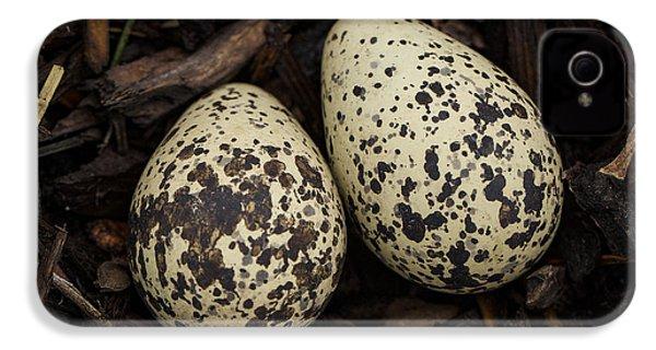 Speckled Killdeer Eggs By Jean Noren IPhone 4 / 4s Case by Jean Noren