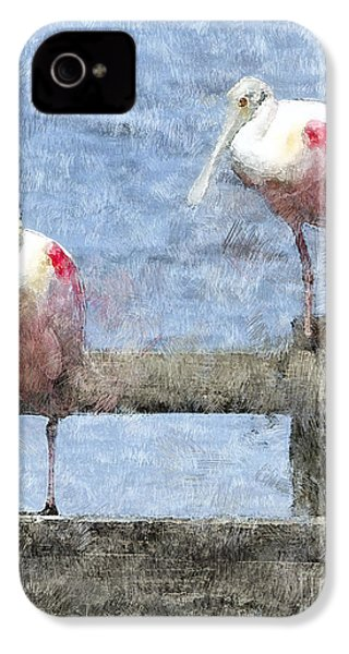 Spoonbills Hanging Out IPhone 4 / 4s Case by Betty LaRue