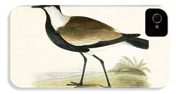 Spur Winged Plover IPhone 4 / 4s Case by English School