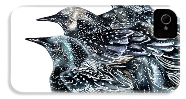 Starlings IPhone 4 / 4s Case by Marie Burke