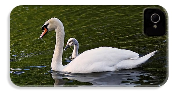 Swan Mother With Cygnet IPhone 4 / 4s Case by Rona Black