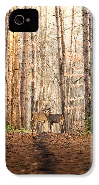 The Gift IPhone 4 / 4s Case by Everet Regal
