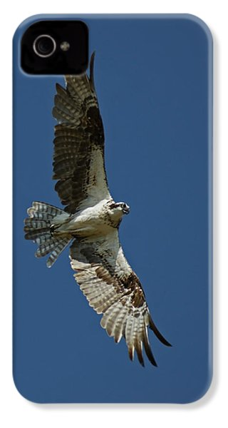 The Osprey IPhone 4 / 4s Case by Ernie Echols