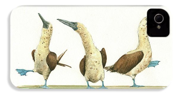 Three Blue Footed Boobies IPhone 4 / 4s Case by Juan Bosco
