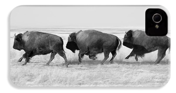 Three Buffalo In Black And White IPhone 4 / 4s Case by Todd Klassy