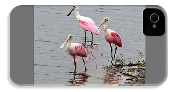 Three Roseate Spoonbills Square IPhone 4 / 4s Case by Carol Groenen