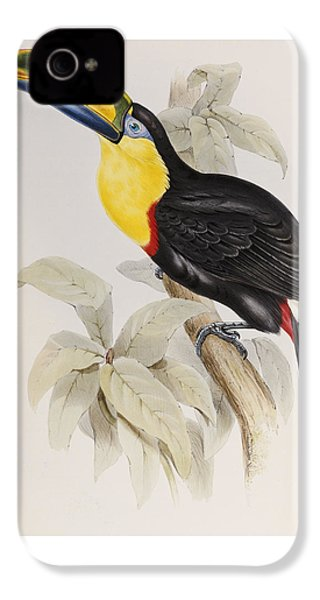 Toucan IPhone 4 / 4s Case by John Gould