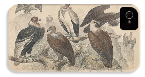 Vultures IPhone 4 / 4s Case by Oliver Goldsmith