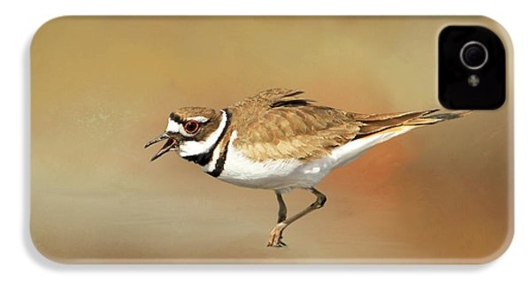 Wading Killdeer IPhone 4 / 4s Case by Donna Kennedy