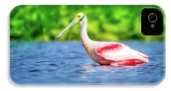 Wading Spoonbill IPhone 4 / 4s Case by Mark Andrew Thomas