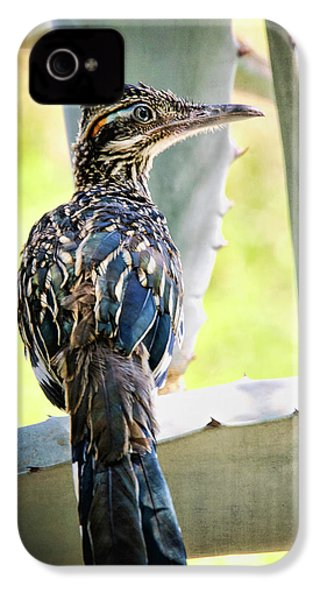 Waiting  IPhone 4 / 4s Case by Saija  Lehtonen
