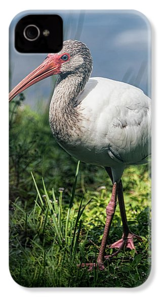 Walk On The Wild Side  IPhone 4 / 4s Case by Saija Lehtonen