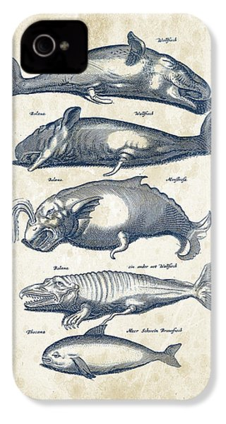 Whale Historiae Naturalis 08 - 1657 - 41 IPhone 4 / 4s Case by Aged Pixel