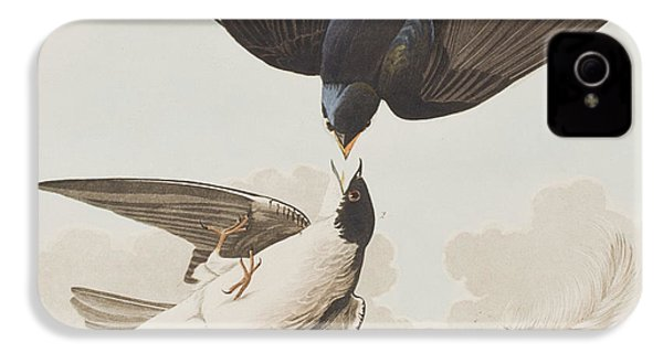 White-bellied Swallow IPhone 4 / 4s Case by John James Audubon