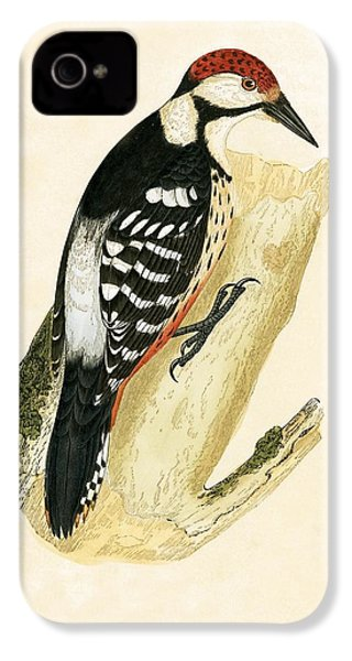 White Rumped Woodpecker IPhone 4 / 4s Case by English School