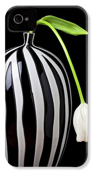 White Tulip In Striped Vase IPhone 4 / 4s Case by Garry Gay