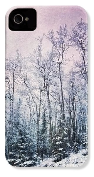Winter Forest IPhone 4 / 4s Case by Priska Wettstein