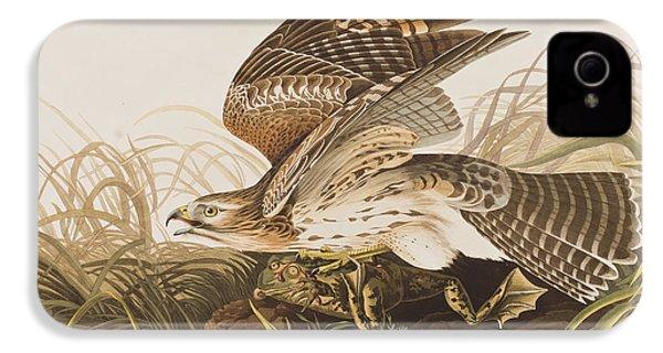 Winter Hawk IPhone 4 / 4s Case by John James Audubon