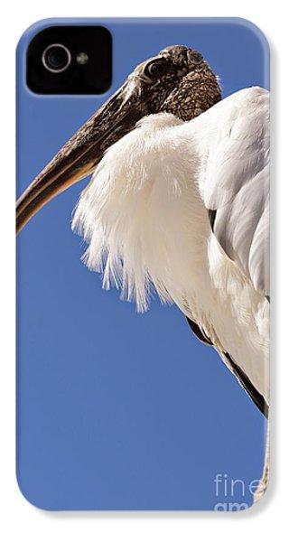 Wonderful Wood Stork IPhone 4 / 4s Case by Carol Groenen