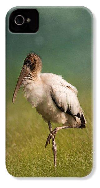 Wood Stork - Balancing IPhone 4 / 4s Case by Kim Hojnacki